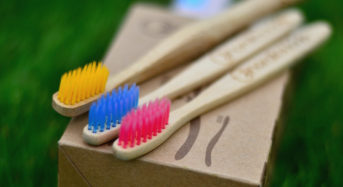 Truth About Your Vegan Biodegradable Toothbrush