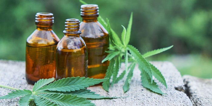 Sports Sponsorships Show the Huge Potential of CBD Businesses