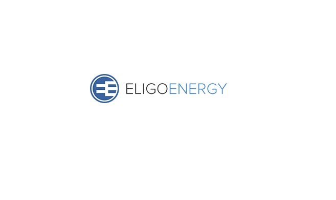 Save in your Electricity Bills with EligoEnergy in New York