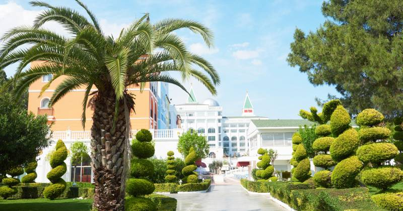 5 latest trends in the landscaping industry in the UAE