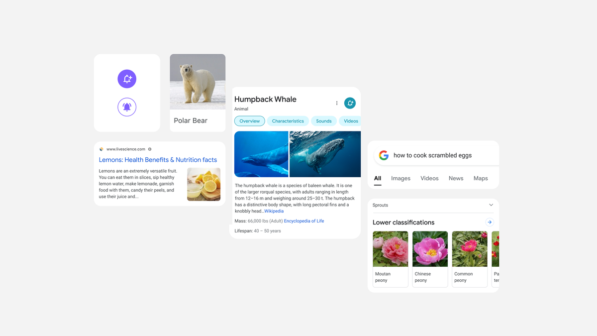 Google search is getting a redesign on mobile to simplify user experience